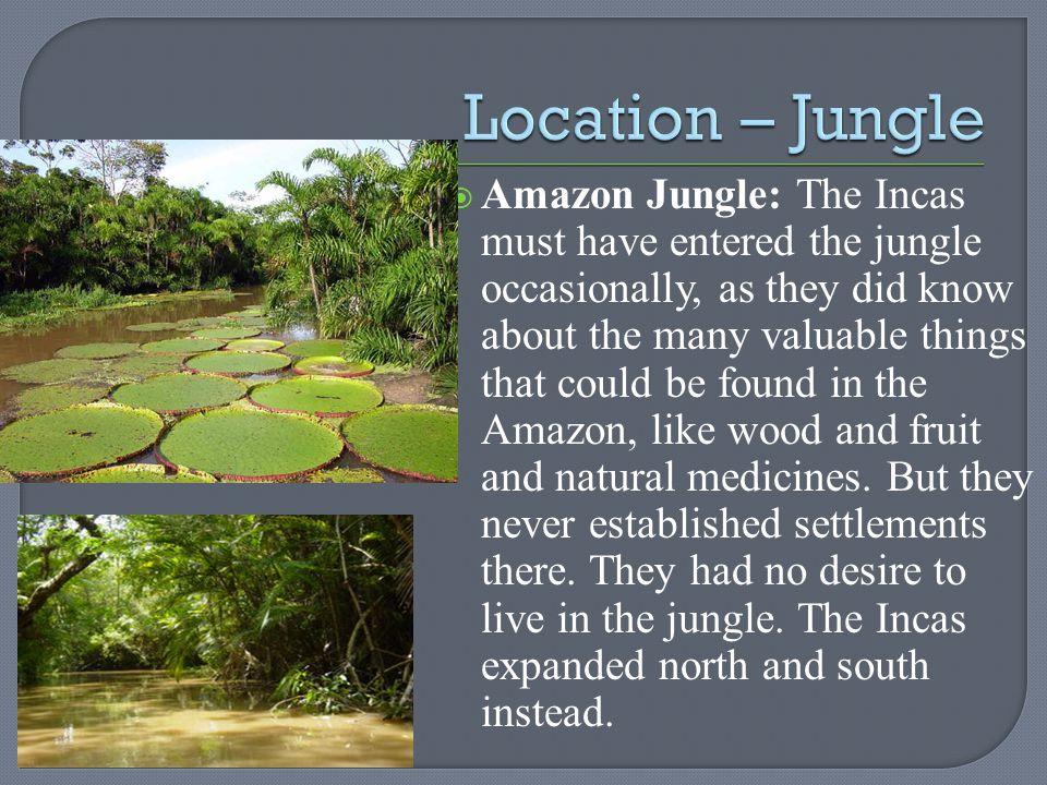 Location – Jungle