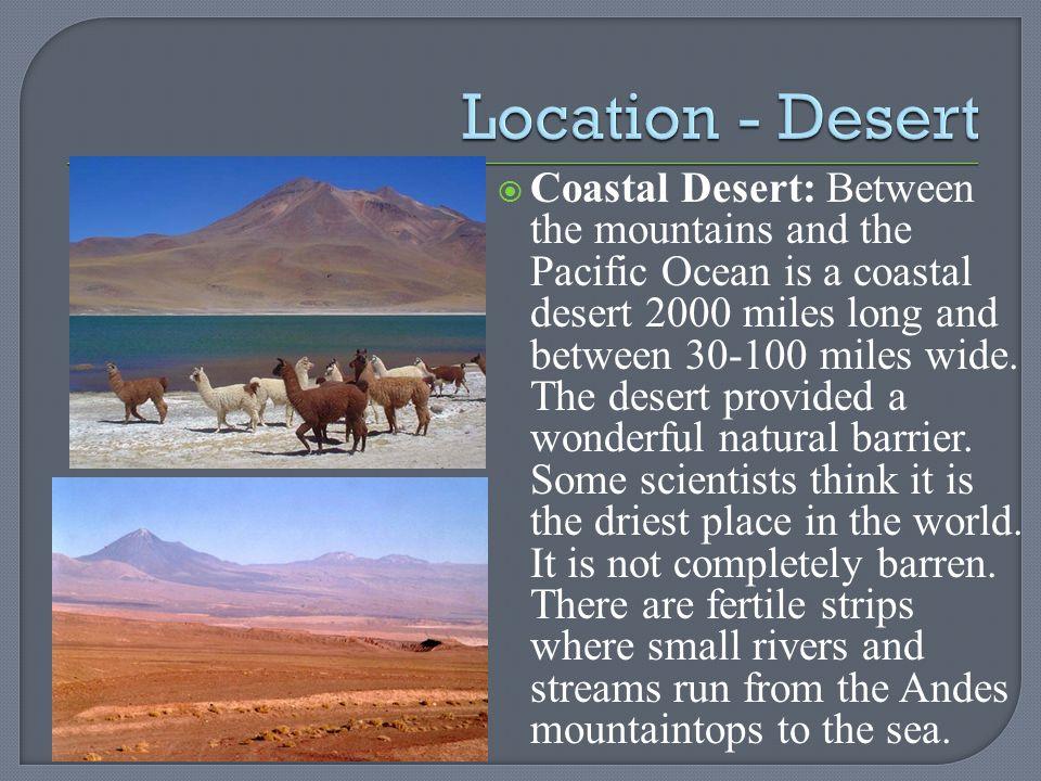 Location - Desert