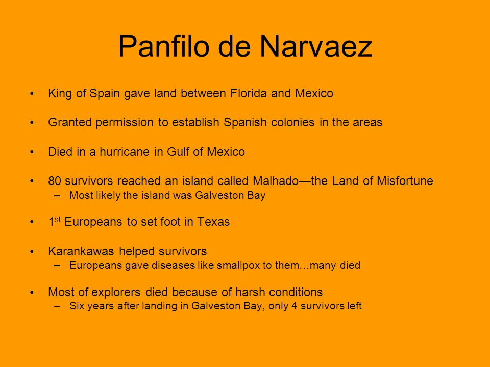 Panfilo de Narvaez King of Spain gave land between Florida and Mexico