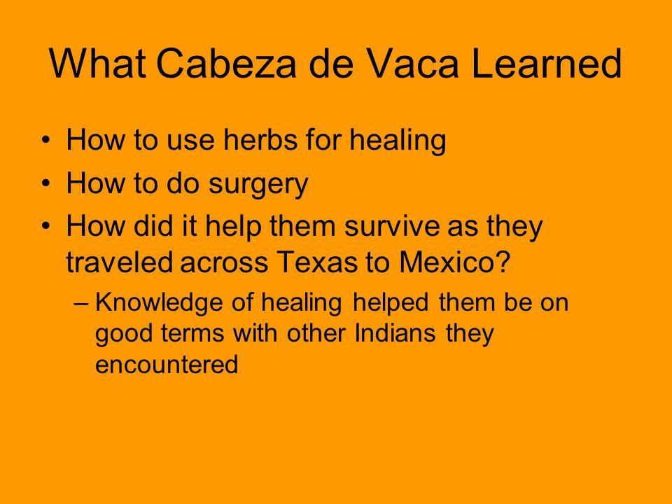 What Cabeza de Vaca Learned