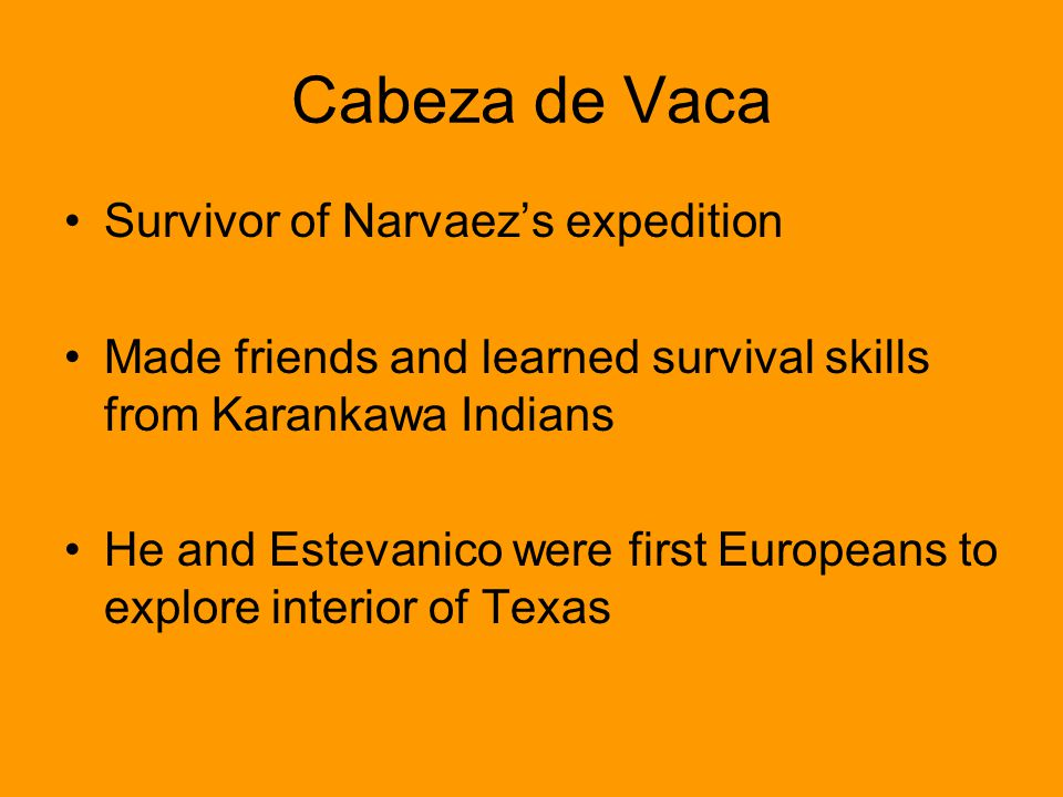 Cabeza de Vaca Survivor of Narvaez's expedition