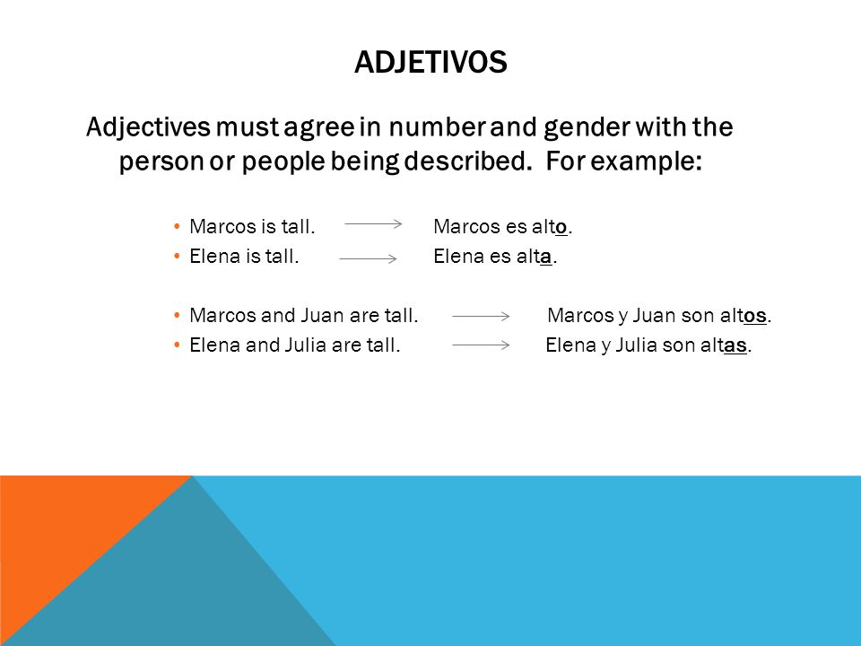 Adjetivos Adjectives must agree in number and gender with the person or people being described. For example: