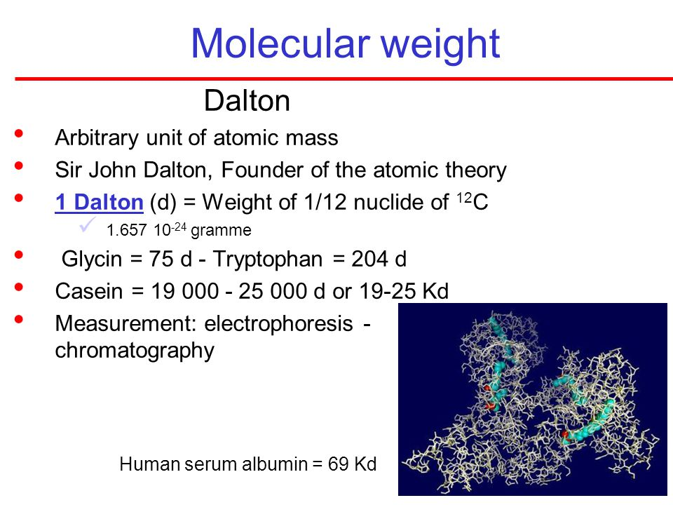 Molecular weight Dalton Arbitrary unit of atomic mass