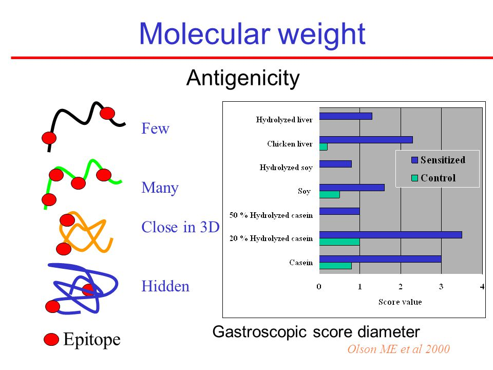 Molecular weight Antigenicity Epitope Few Many Close in 3D Hidden