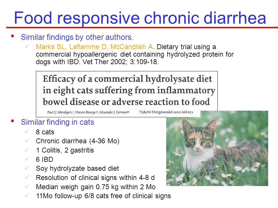 Food responsive chronic diarrhea