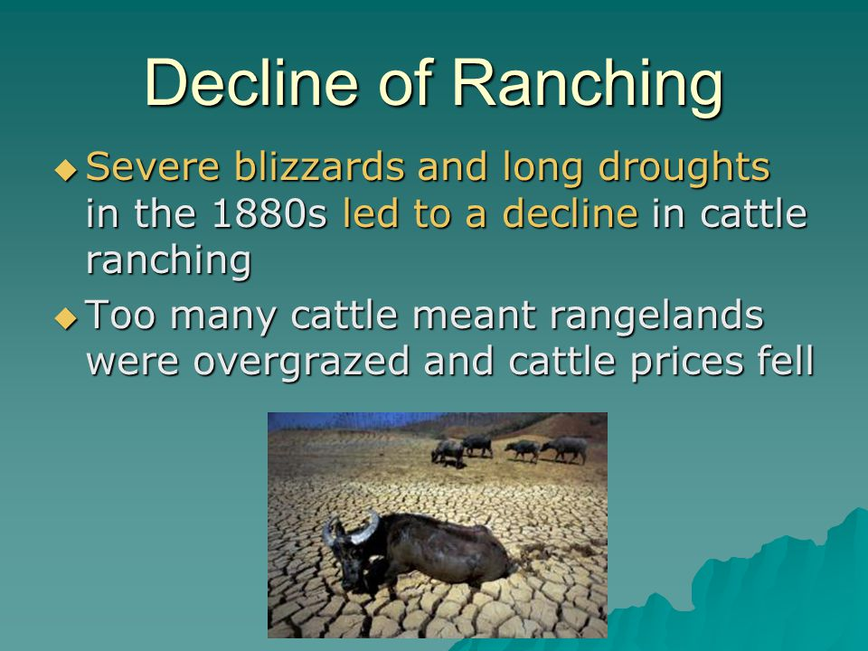 Decline of Ranching Severe blizzards and long droughts in the 1880s led to a decline in cattle ranching.