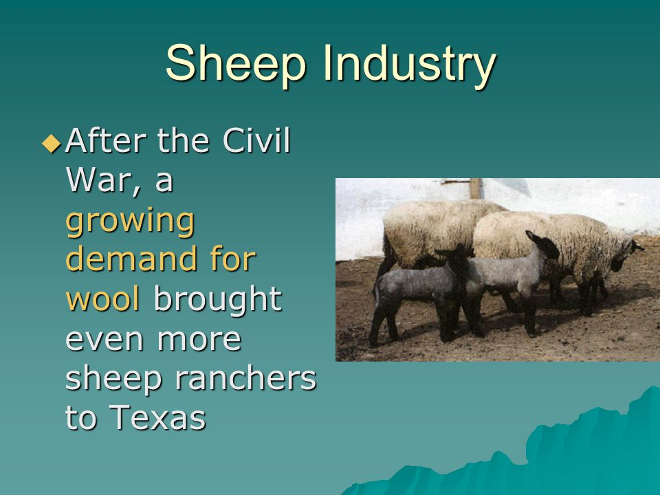 Sheep Industry After the Civil War, a growing demand for wool brought even more sheep ranchers to Texas.