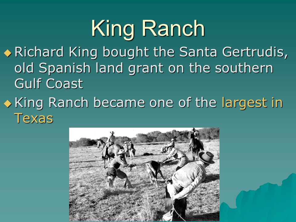 King Ranch Richard King bought the Santa Gertrudis, old Spanish land grant on the southern Gulf Coast.
