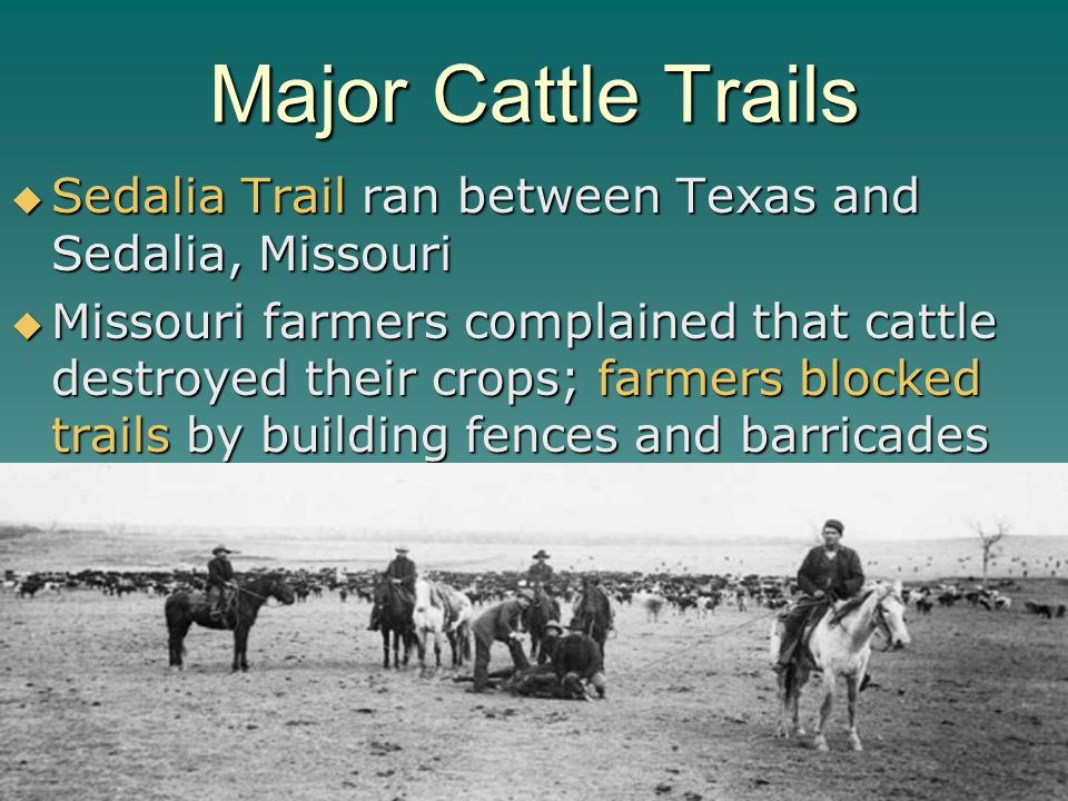 Major Cattle Trails Sedalia Trail ran between Texas and Sedalia, Missouri.