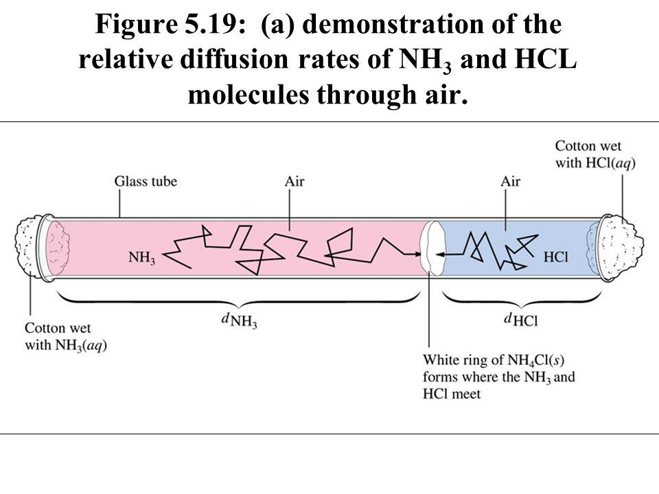 Figure 5.19: (a) demonstration of the relative diffusion rates of NH3 and HCL molecules through air.