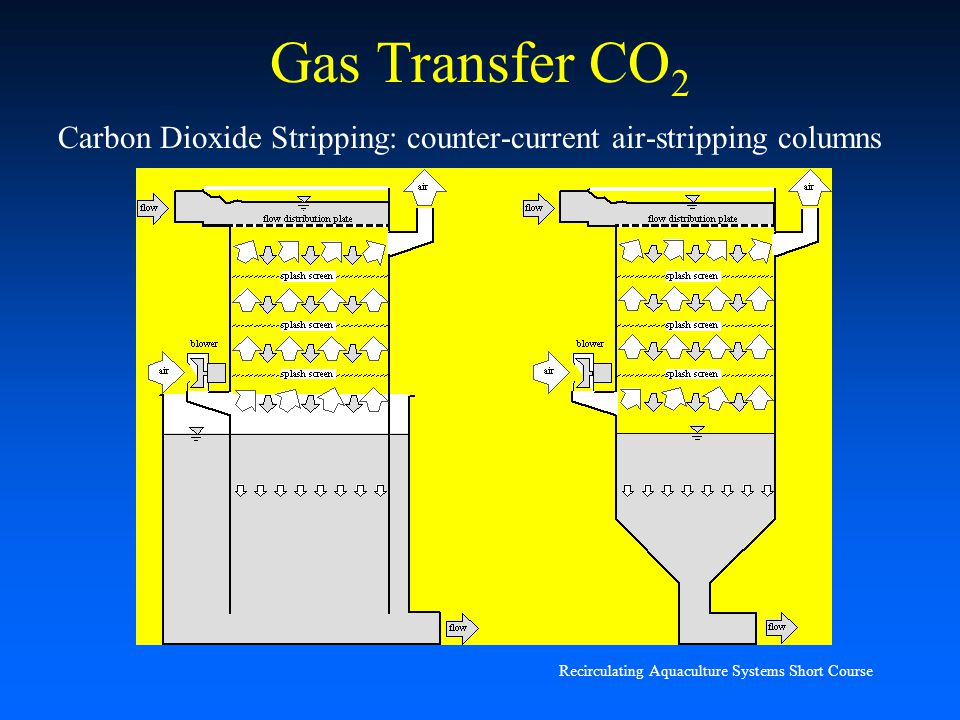 Carbon Dioxide Removal Systems : Gas transfer m b timmons ph d ppt download