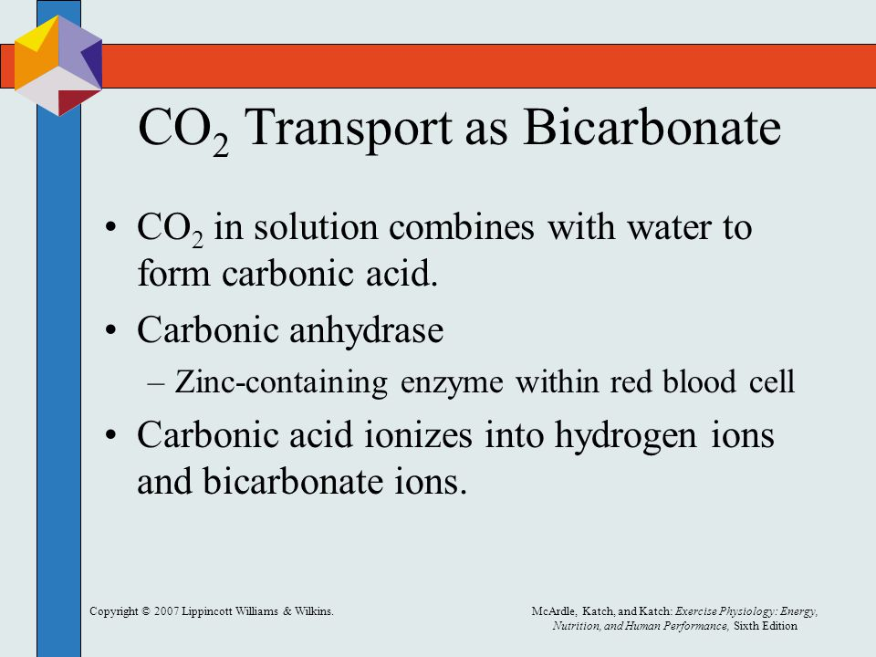 CO2 Transport as Bicarbonate