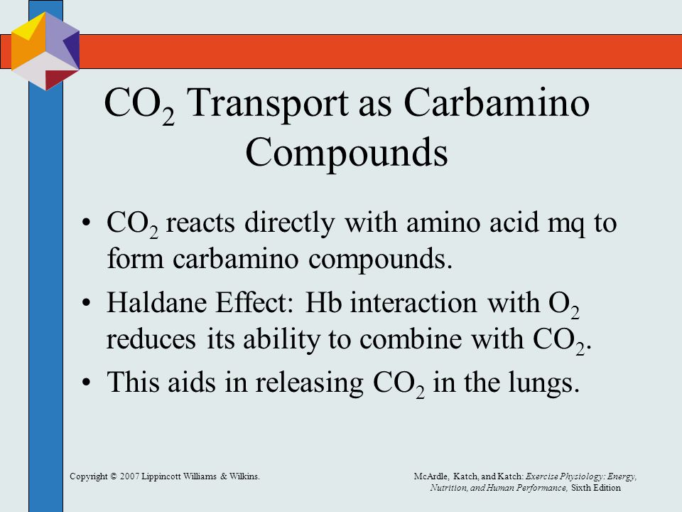 CO2 Transport as Carbamino Compounds