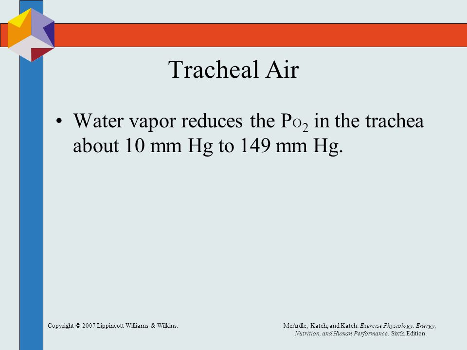 Tracheal Air Water vapor reduces the PO2 in the trachea about 10 mm Hg to 149 mm Hg. Copyright © 2007 Lippincott Williams & Wilkins.