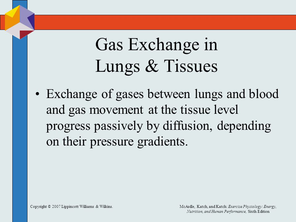 Gas Exchange in Lungs & Tissues