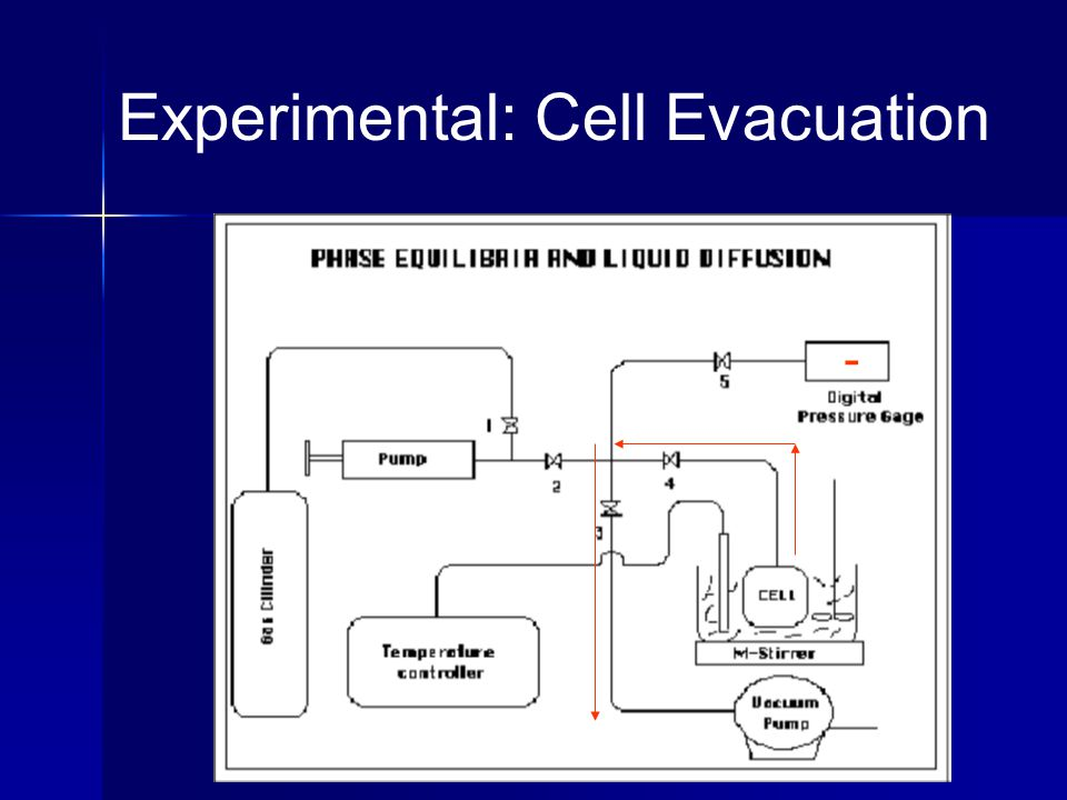 Experimental: Cell Evacuation