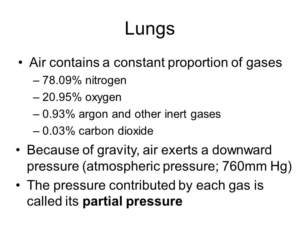 Lungs Air contains a constant proportion of gases