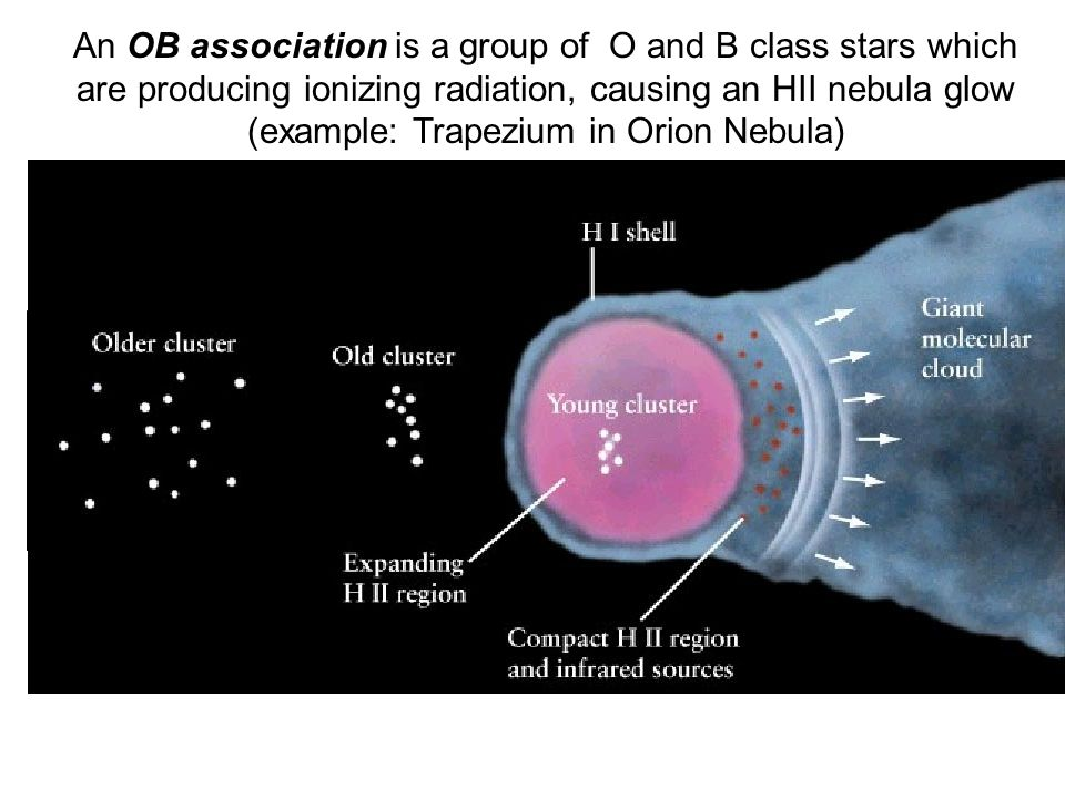 An OB association is a group of O and B class stars which are producing ionizing radiation, causing an HII nebula glow (example: Trapezium in Orion Nebula)