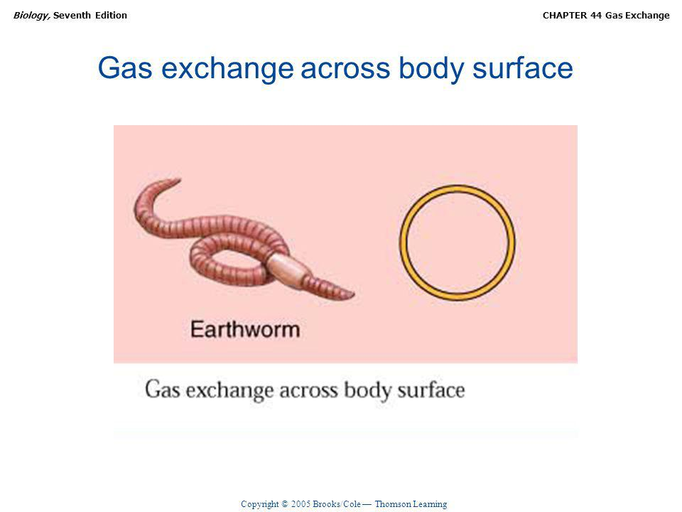 Gas exchange across body surface