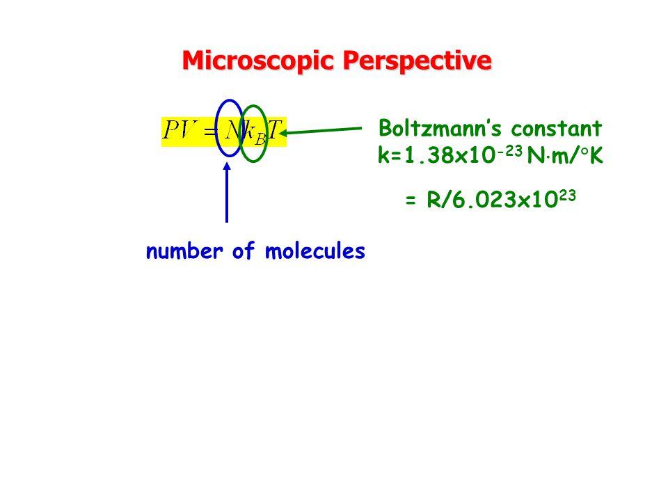 Microscopic Perspective
