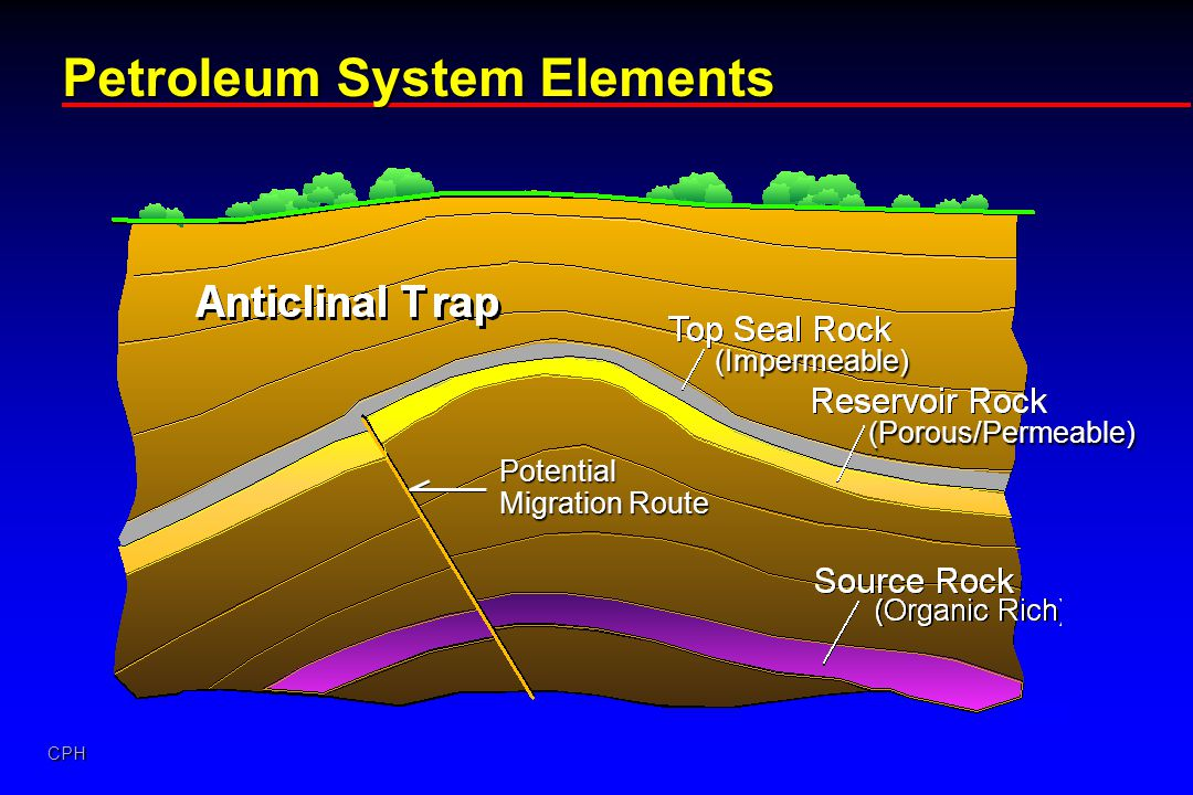 Petroleum System Elements
