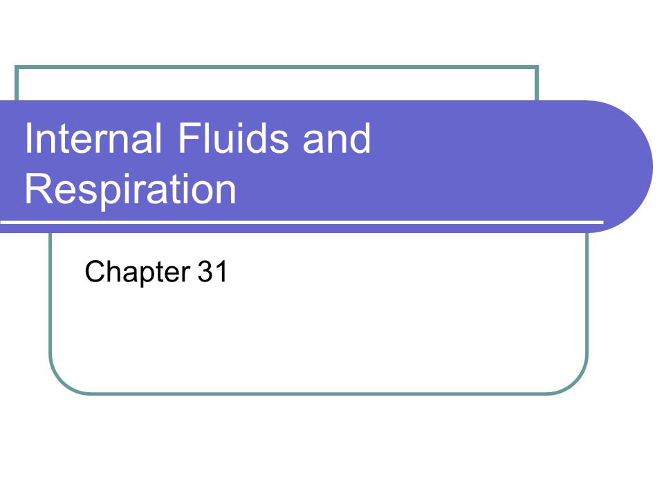 Internal Fluids and Respiration