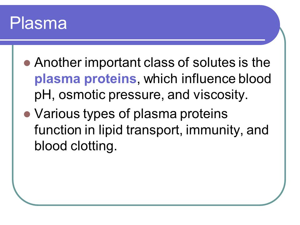 Plasma Another important class of solutes is the plasma proteins, which influence blood pH, osmotic pressure, and viscosity.