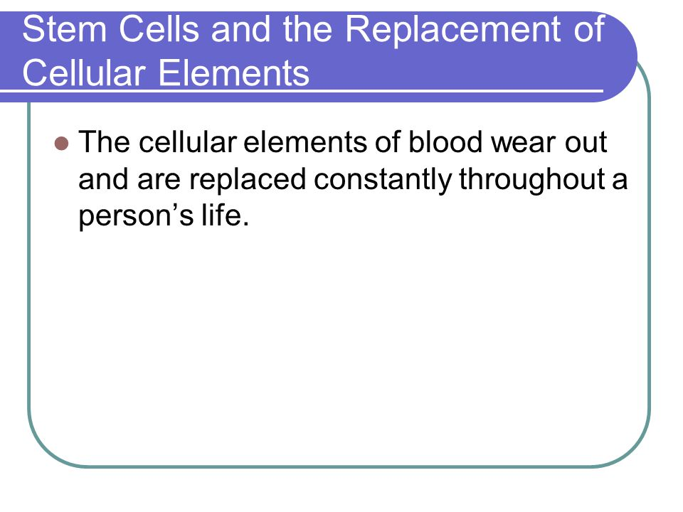 Stem Cells and the Replacement of Cellular Elements