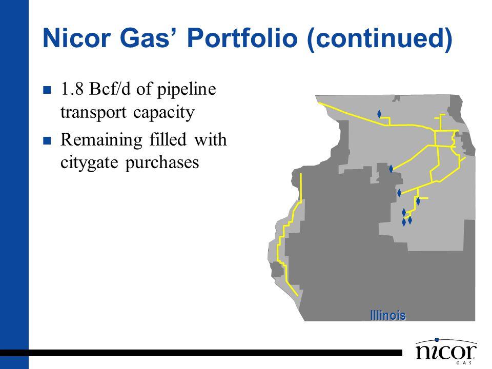 Nicor Gas' Portfolio (continued)
