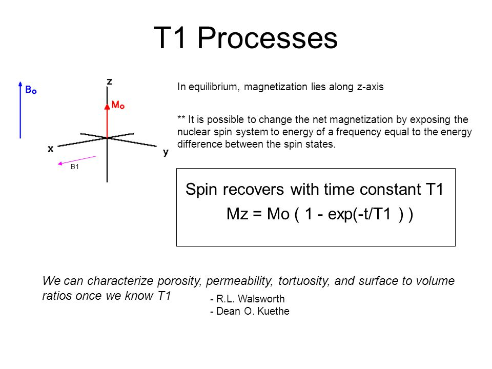 T1 Processes Spin recovers with time constant T1
