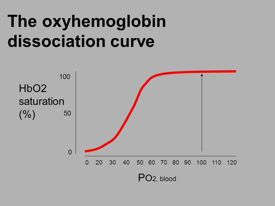The oxyhemoglobin dissociation curve