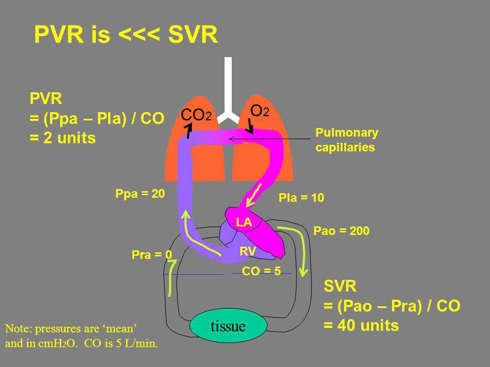 PVR is <<< SVR