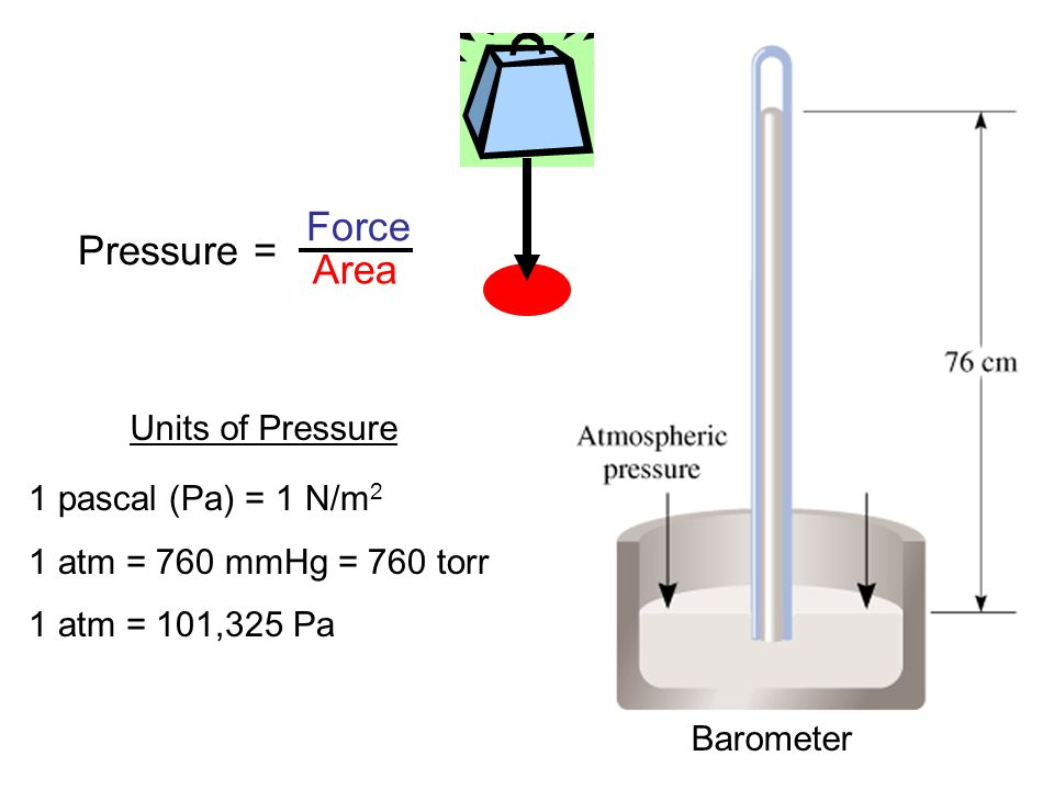 Force Pressure = Area Units of Pressure 1 pascal (Pa) = 1 N/m2