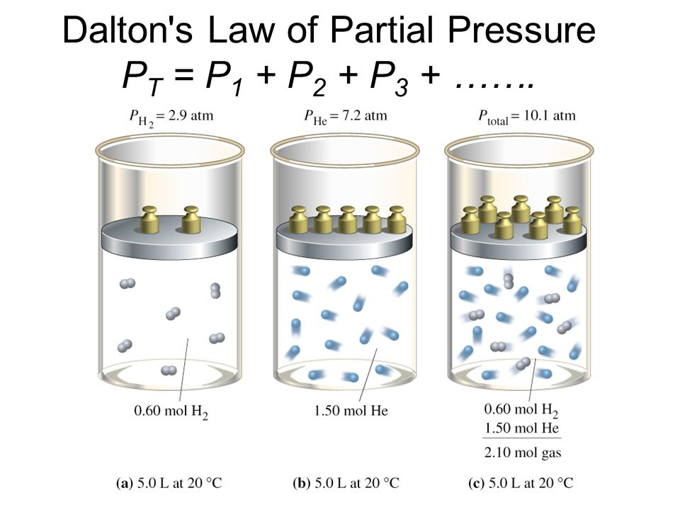 Dalton s Law of Partial Pressure PT = P1 + P2 + P3 + …….