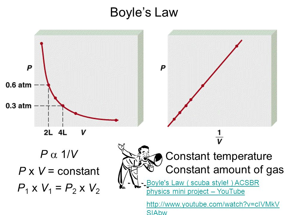 Boyle's Law P a 1/V Constant temperature Constant amount of gas