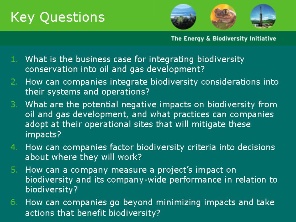 Slide 14 lists six key questions about the future of oil and gas development, which formed the framework of the work of the Energy and Biodiversity Initiative.