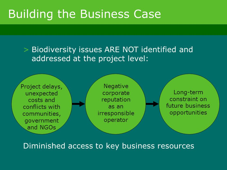 Building the Business Case