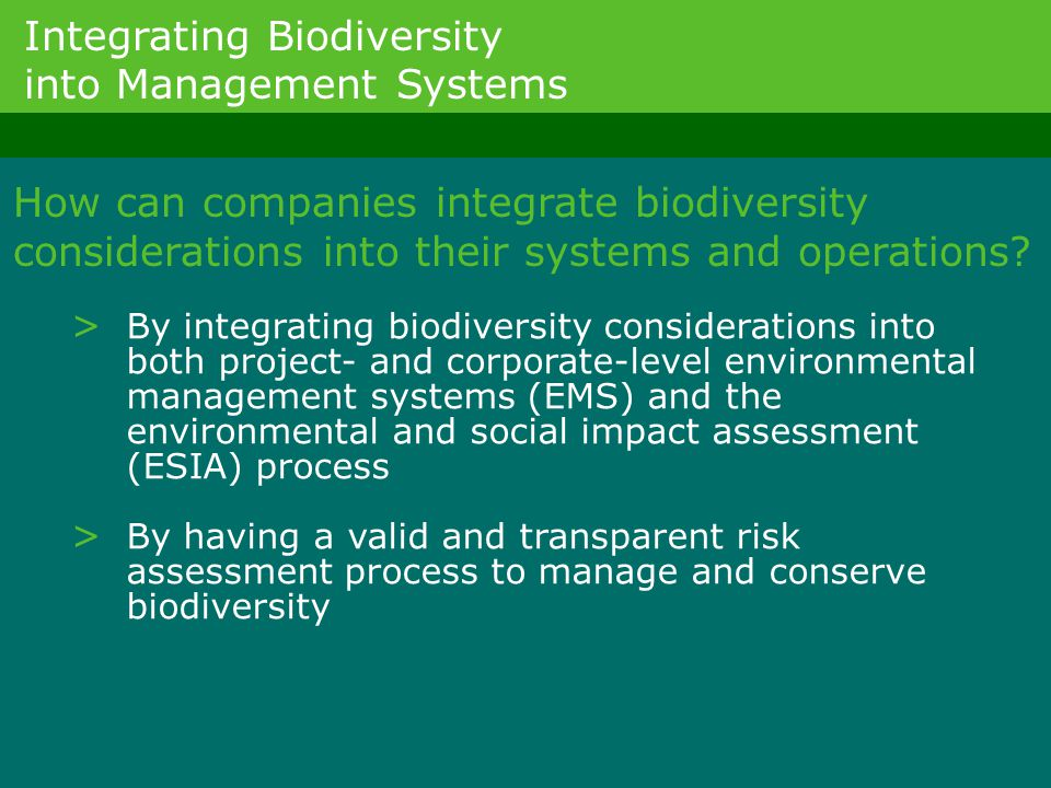 Integrating Biodiversity into Management Systems