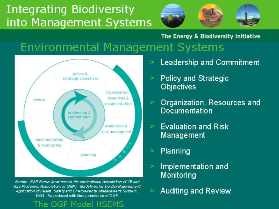 Slides 18-22 discuss ways in which companies can integrate biodiversity into their existing systems and operations, namely the Environmental Management System (EMS) and the Environmental and Social Impact Assessment Process (ESIA). These slides will be most useful for demonstrating to colleagues that biodiversity can be inserted into existing systems in a relatively straightforward manner, without having to reinvent the wheel.
