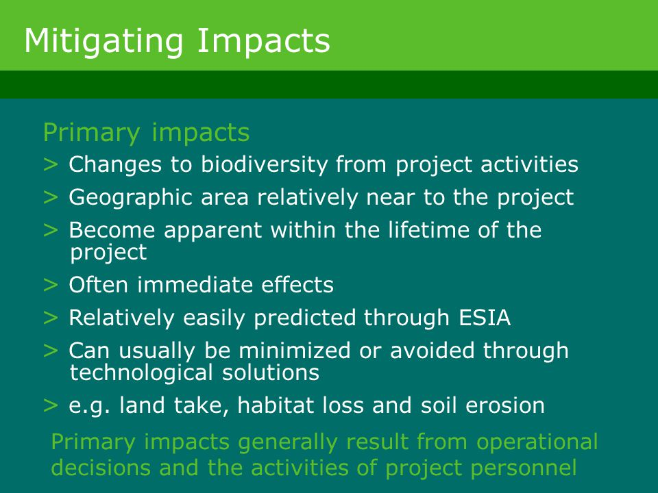 Mitigating Impacts Primary impacts