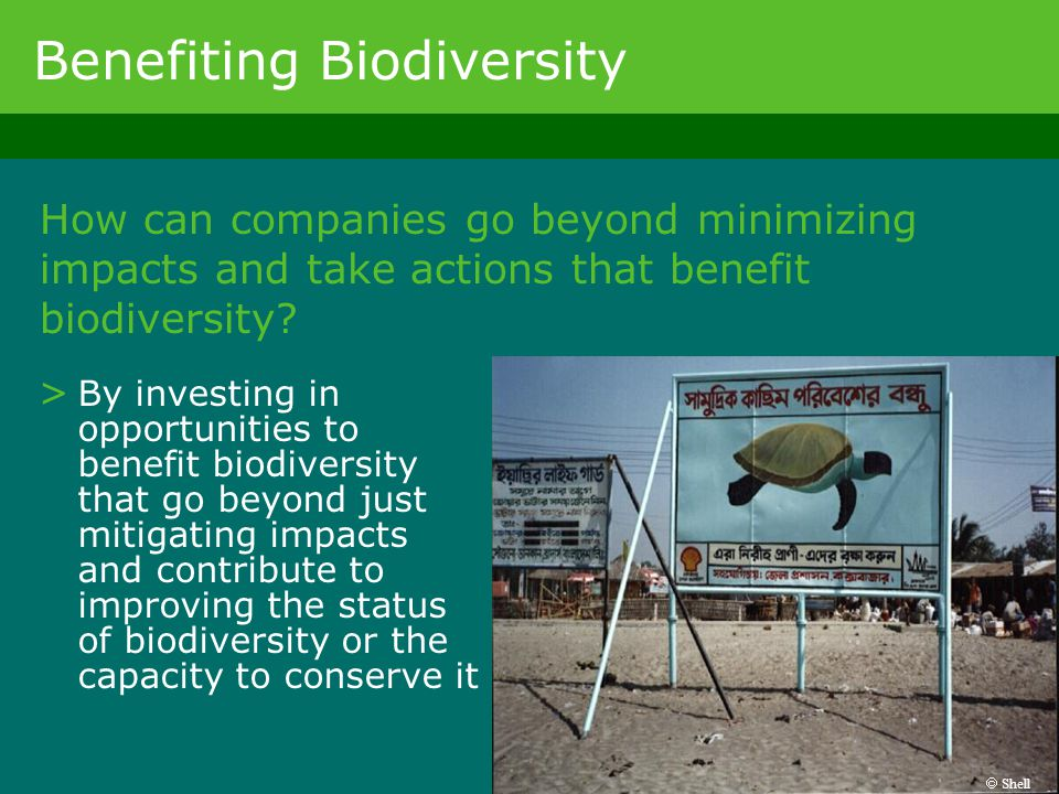 Benefiting Biodiversity