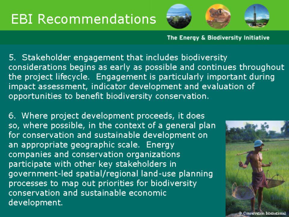 Slides 44-48 list the recommendations of the Energy and Biodiversity Initiative.