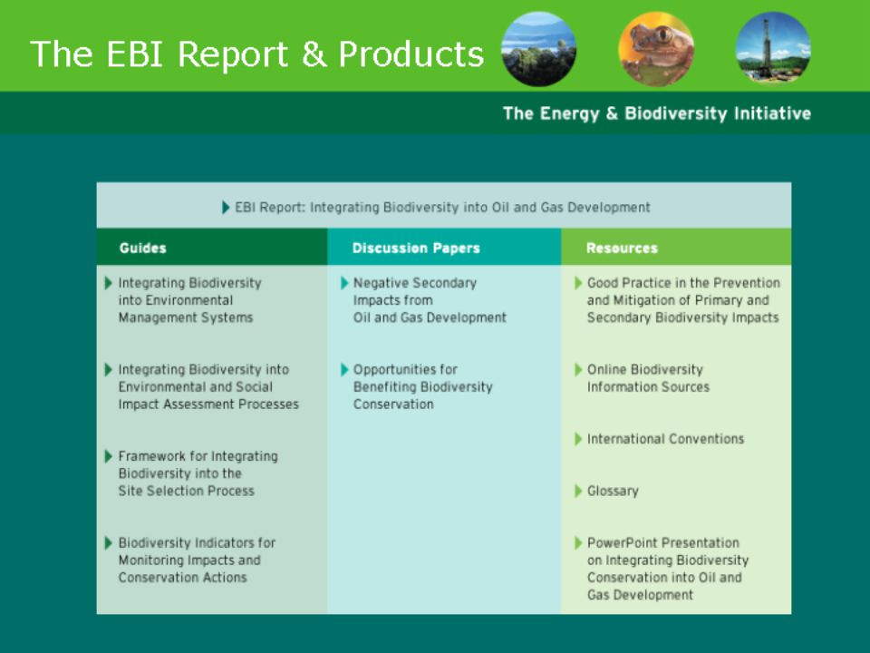 Slides 49-51 present information about the Energy & Biodiversity Initiative. They will be useful for anyone making a presentation specifically about the Initiative.