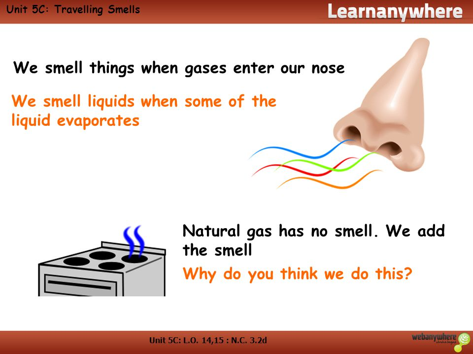 Unit 5C: Travelling Smells