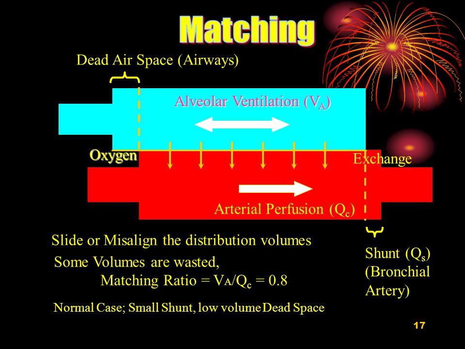 Matching Dead Air Space (Airways) Alveolar Ventilation (VA) Oxygen