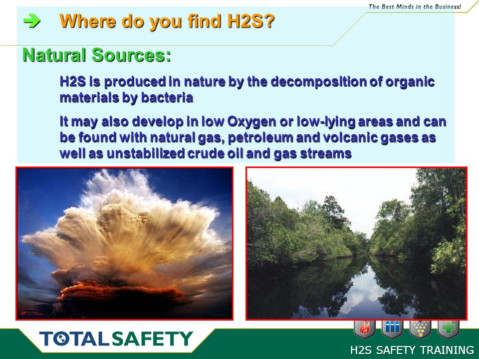 Where do you find H2S Natural Sources: