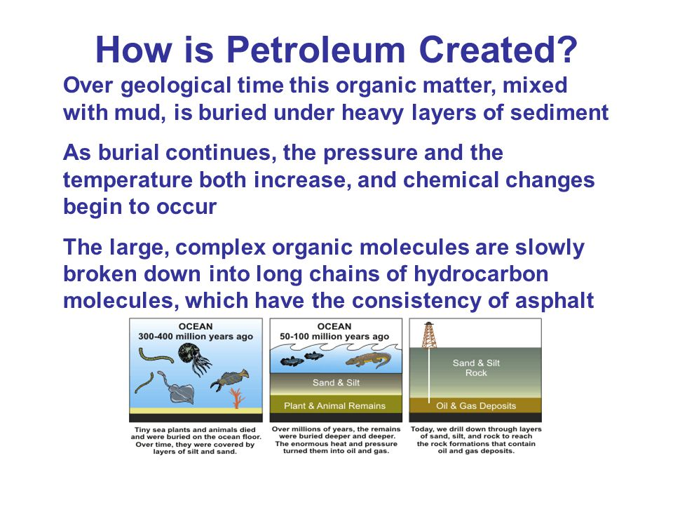How is Petroleum Created