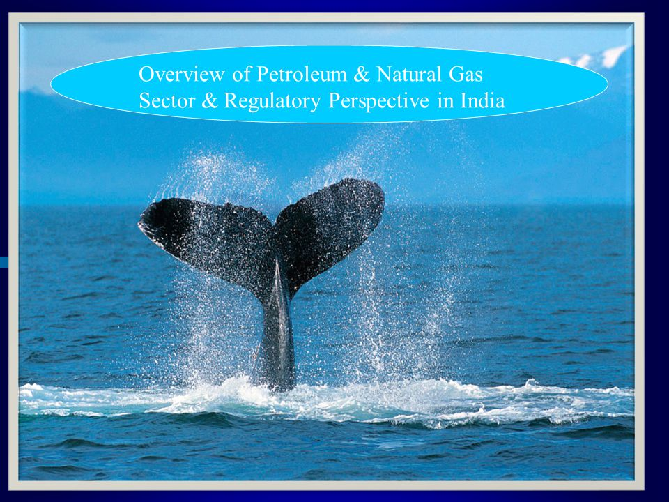 Overview of Petroleum & Natural Gas Sector & Regulatory Perspective in India