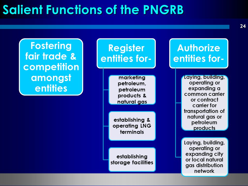 Salient Functions of the PNGRB