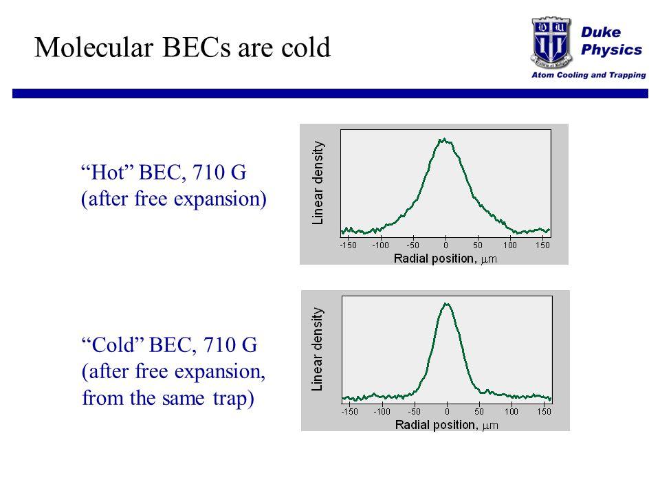 Molecular BECs are cold